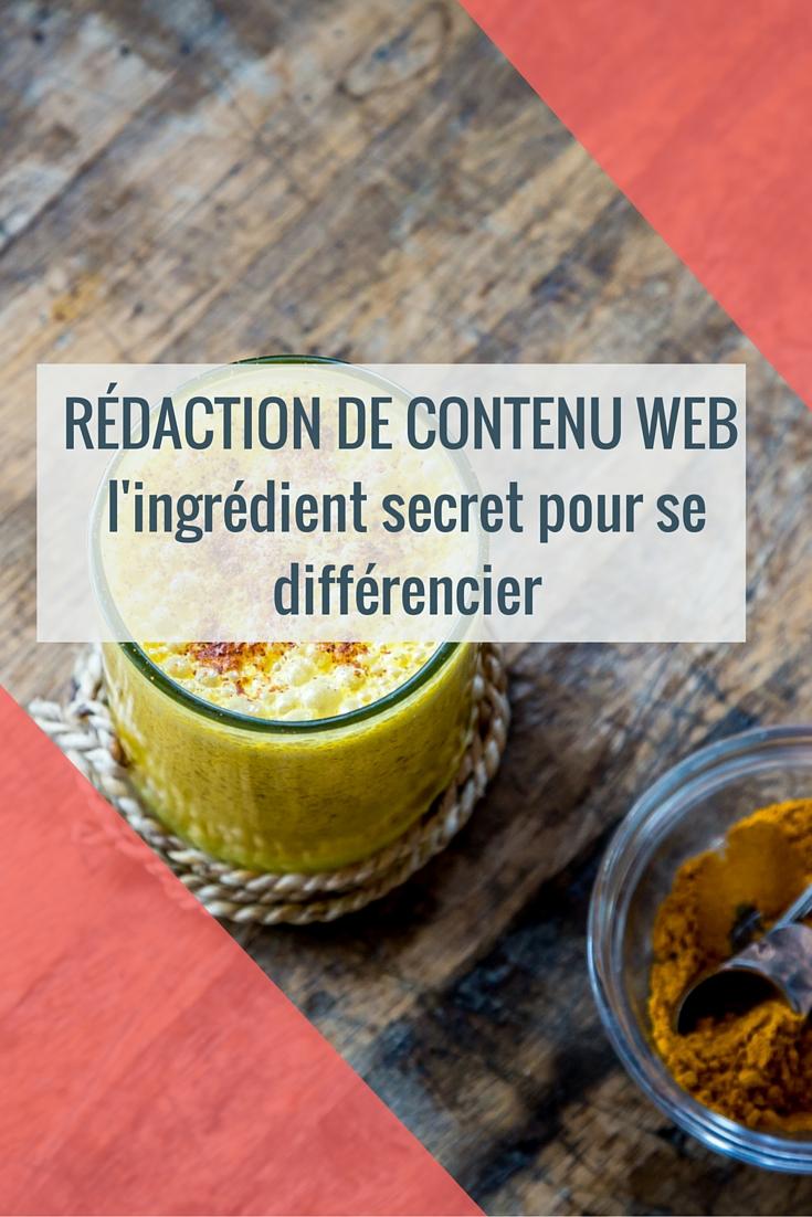 A13-PIN_rédaction de contenu web
